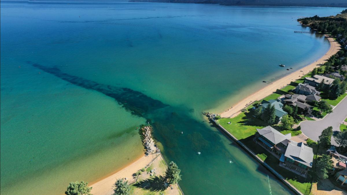 Invasive weeds spreading into Lake Tahoe