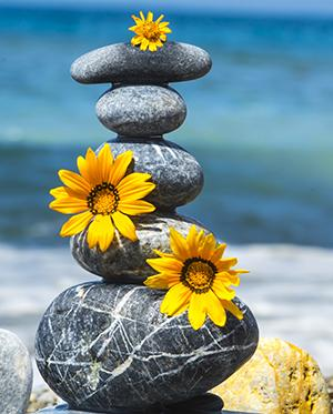 Stacked rocks with daisies