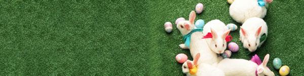 easter-bunnies-grass.jpg