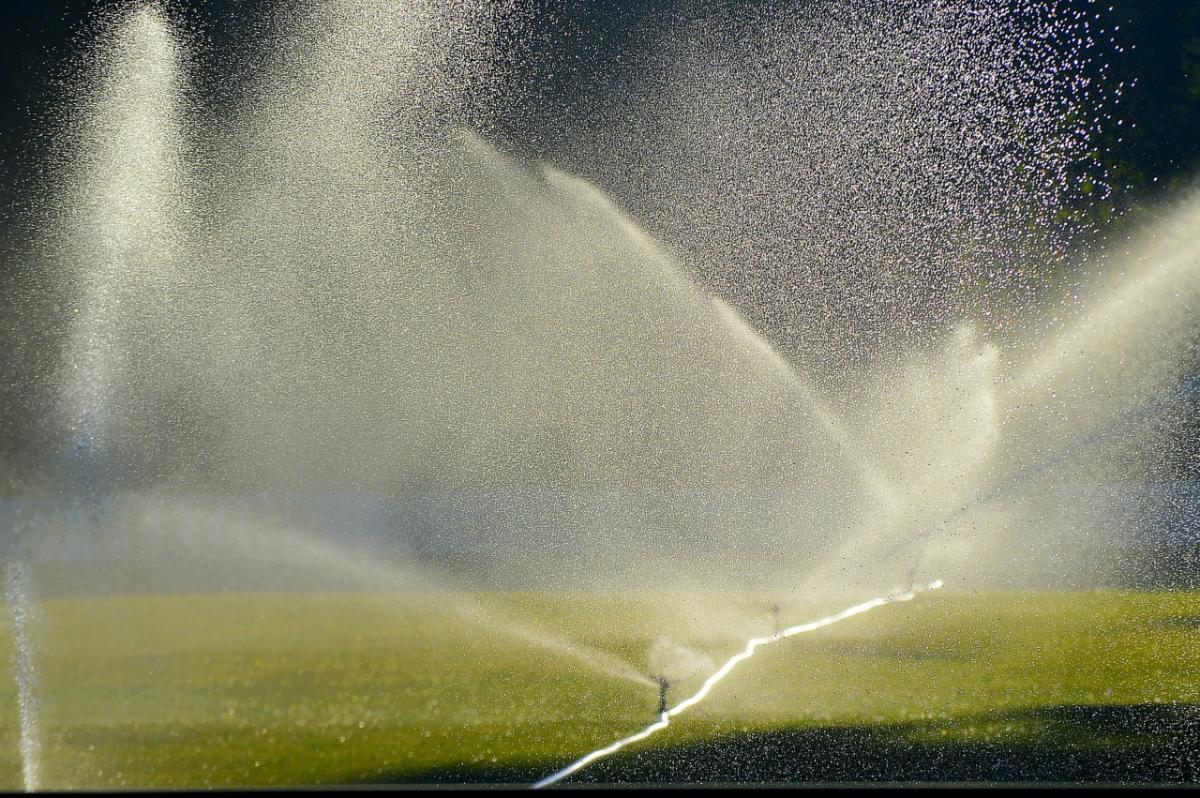 lawn-irrigation-2456123_1280.jpg