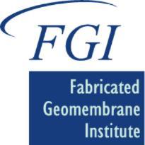 FGI logo