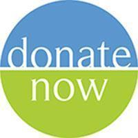 """Donate Now"" button"