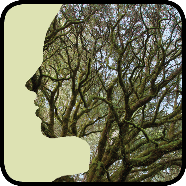 Silhouette of a woman with mossy bay branches