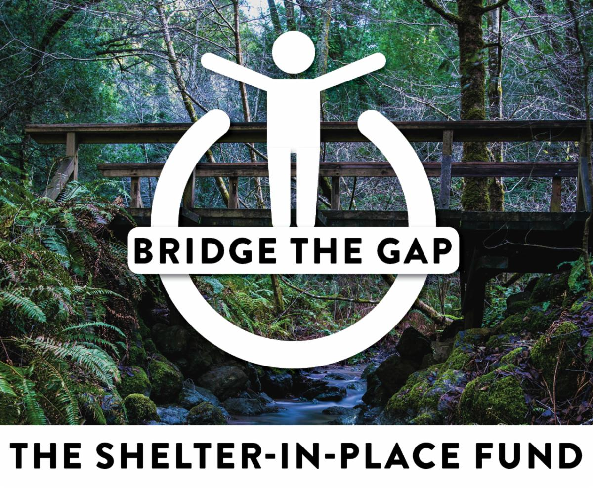 Bridge the Gap logo with view of bridge