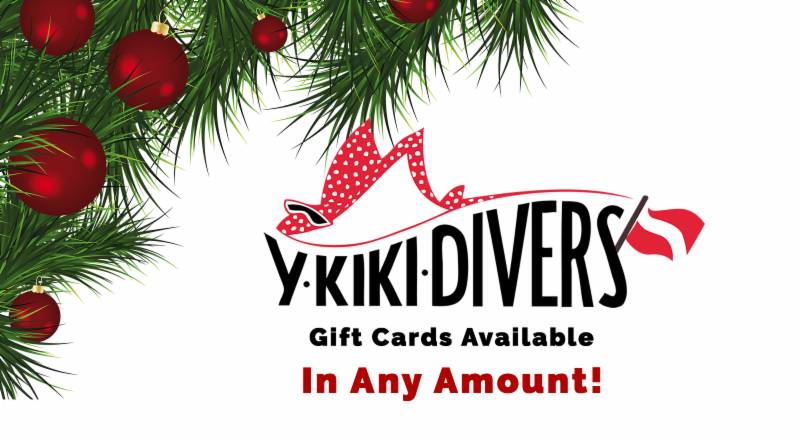 Y-kiki Gift Cards available in any amount!