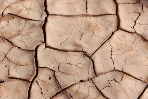 drought stricken soil