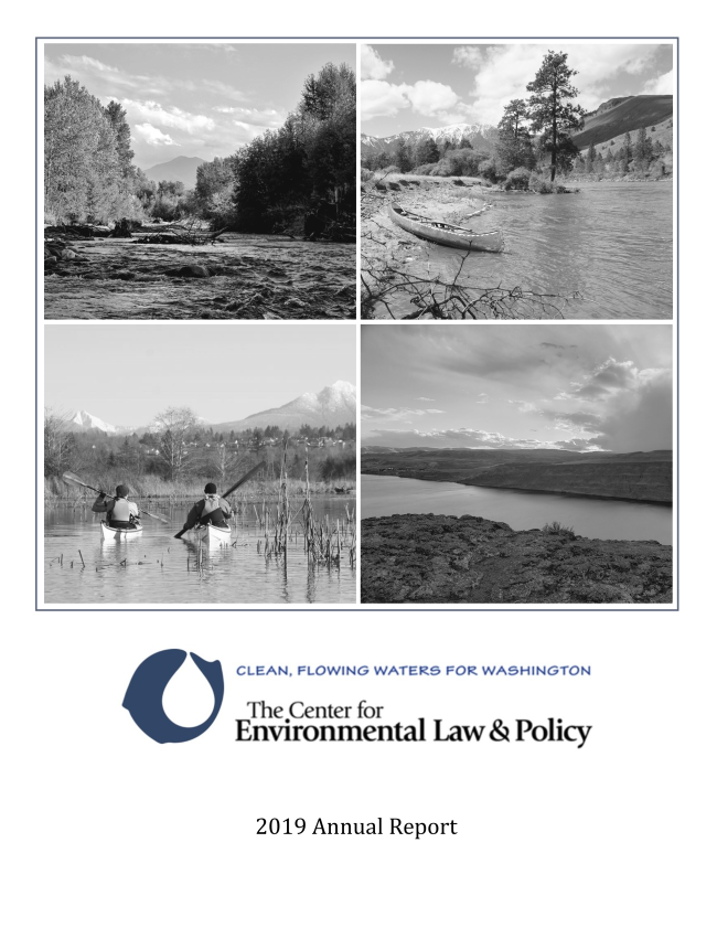 Image of the front cover of our 2019 annual report includes four images of rivers and our CELP logo.
