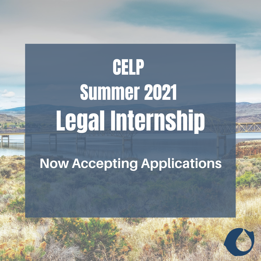 """Blue Square with text reading""""CELP Summer 2021 Legal Internships. Now accepting applications"""". Photo of Columbia River faded in the background."""