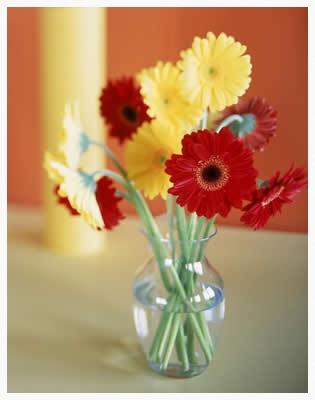 vase-flowers.jpg