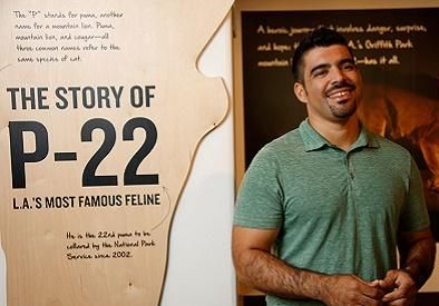Miguel Ordenana standing in front of the P-22 Exhibit at the LA Natural History Museum.