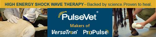 PulseVet banner ad