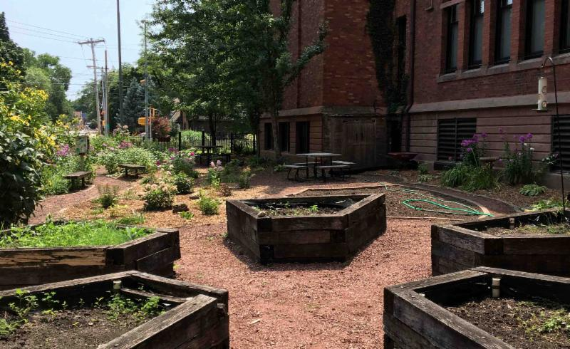 Photo of the garden area at Randall Elementary School.