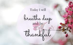 Gratitude Meditation Circle