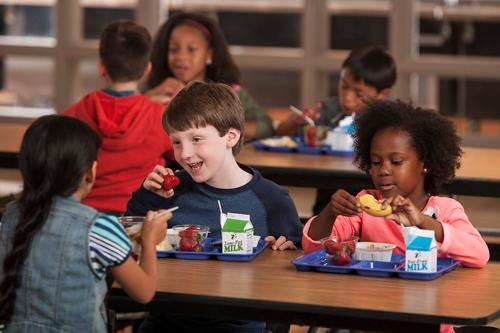 School Meals For Students