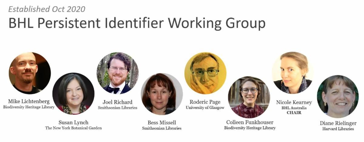 Graphic showing the members of BHL's Persistent Identifier Working Group.