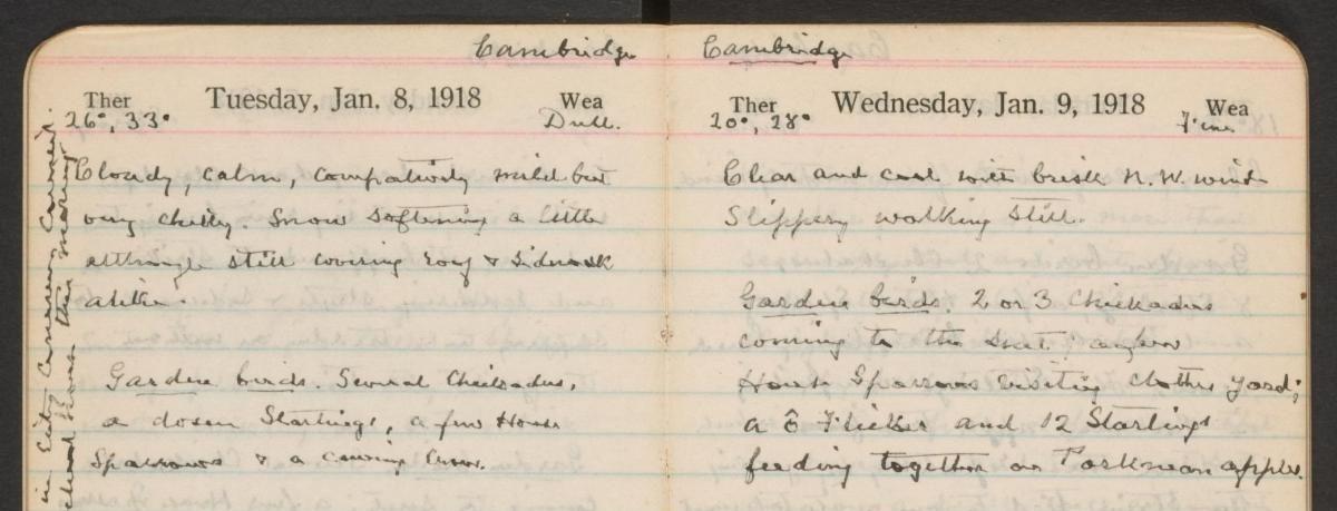 Handwritten page from William Brewster's 1918 journal.