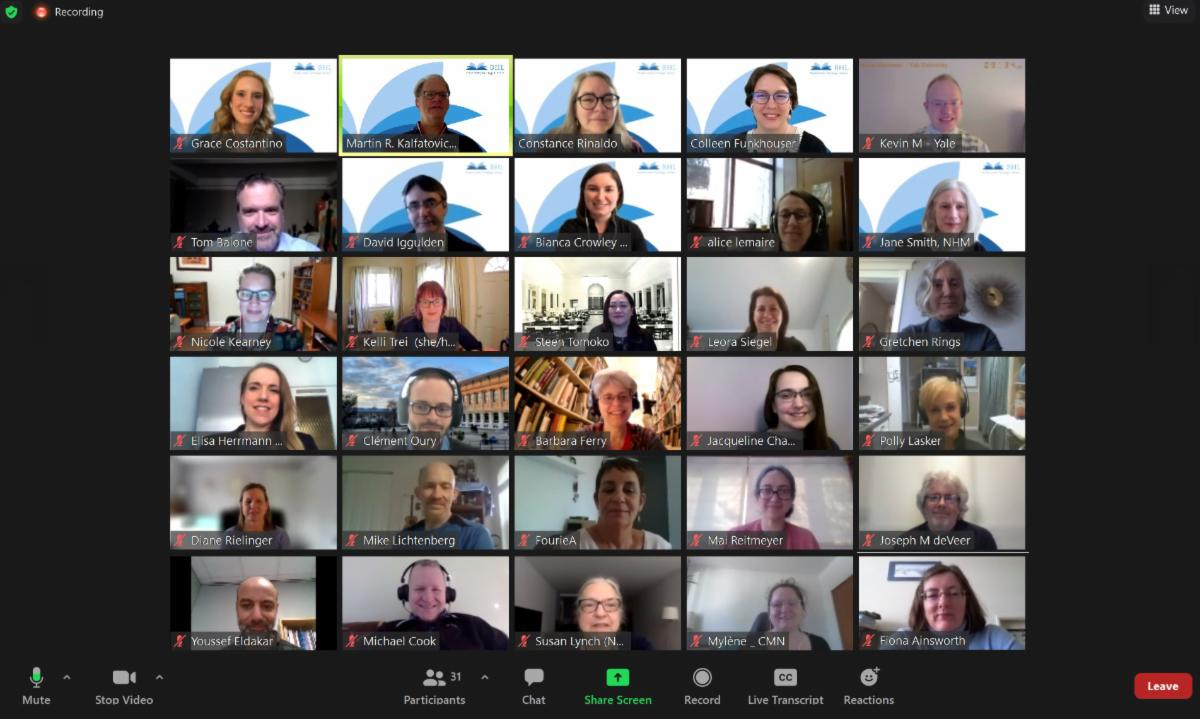 Screenshot of a Zoom meeting interface with a gallery view of people's heads.