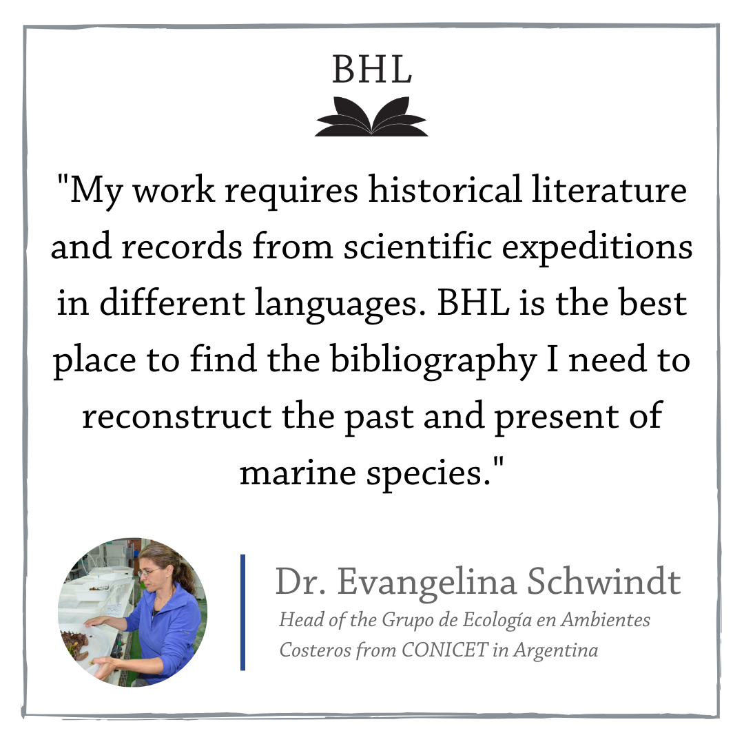 Graphic with a quote from Dr. Evangelina Schwindt.