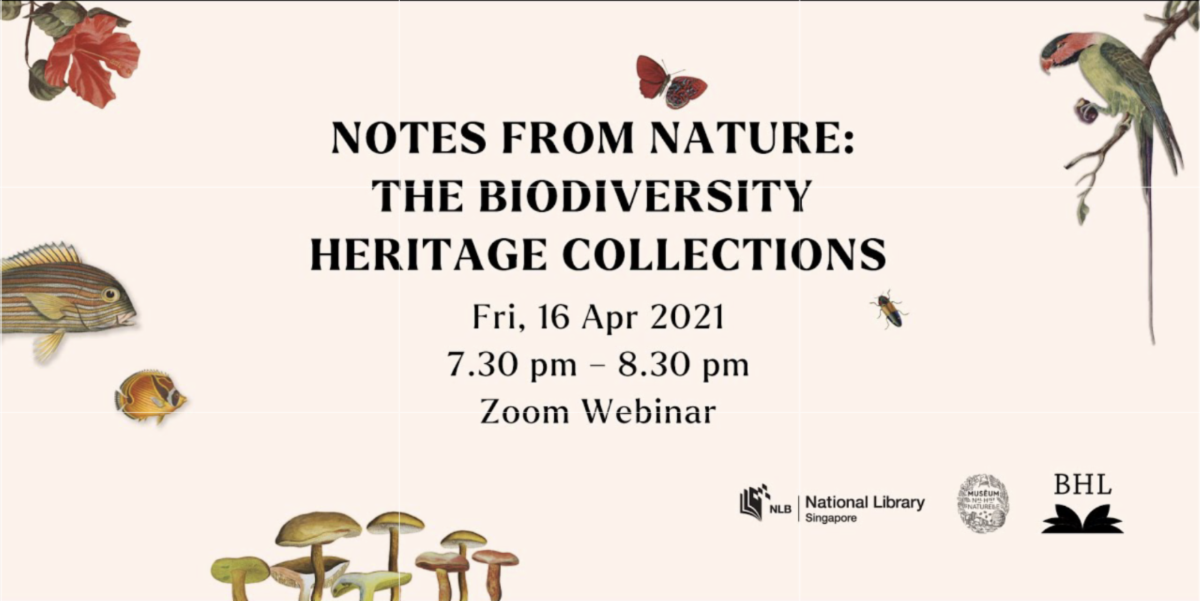 """Graphic for """"Notes from Nature: The Biodiversity Heritage Collections."""""""