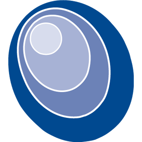 SCT Logo