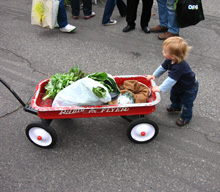 kid pushing red wagon with produce