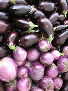 eggplant will be here forever.